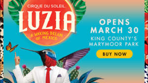 Special Ticket Offer for Chamber Members to Cirque du Soleil LUZIA